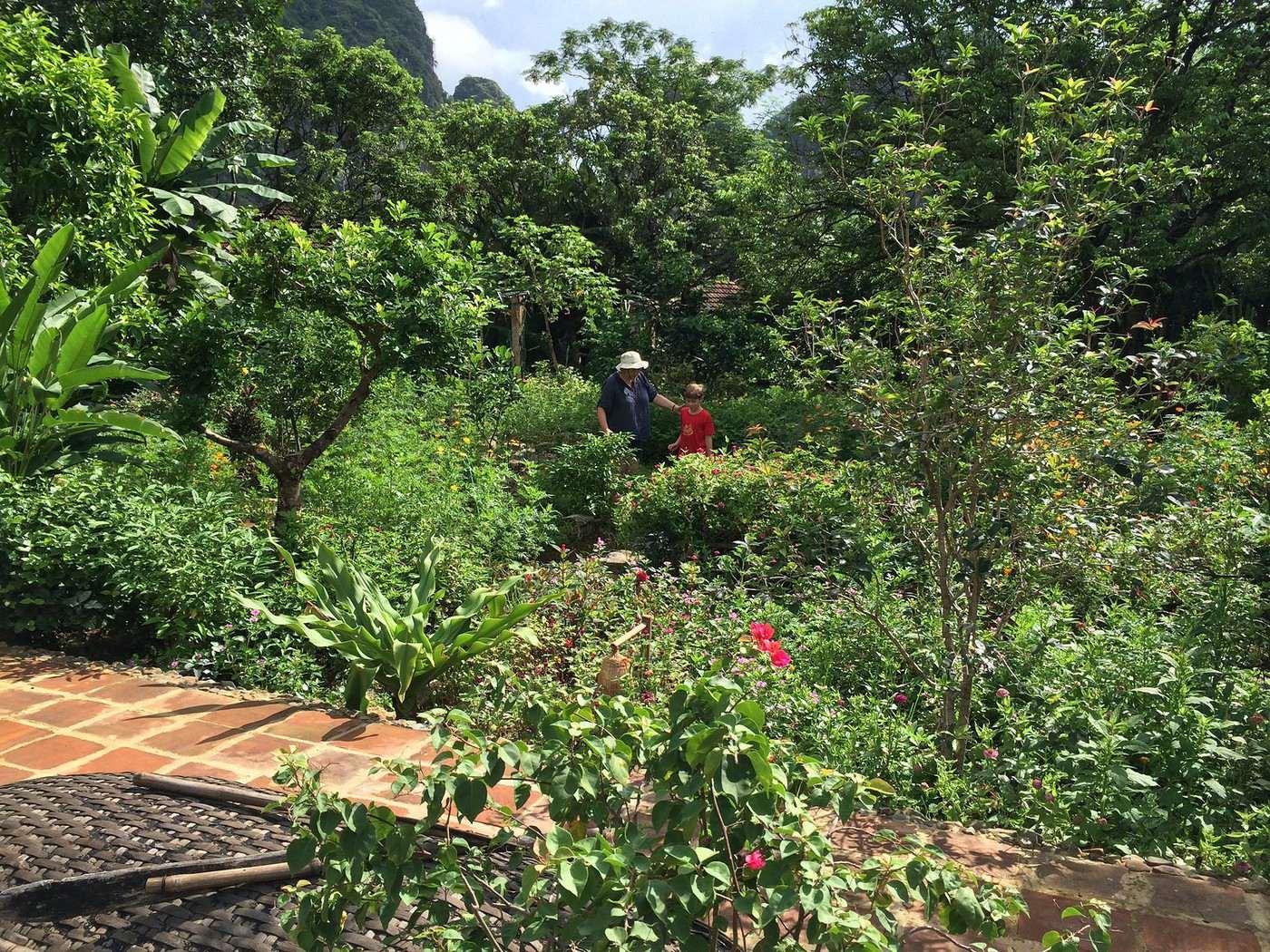 Vietnam nord et centre en famille for Piscine jardin lons