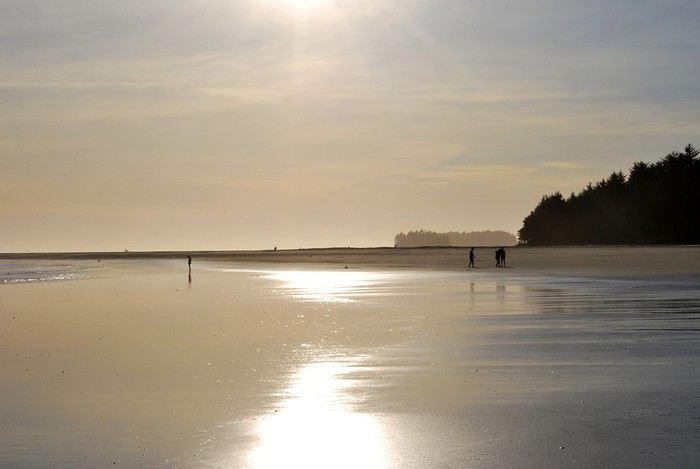 Chesterman Beach (entre Tofino et Ucluelet) 1439642222-UPeyFUwGjTuiyhH