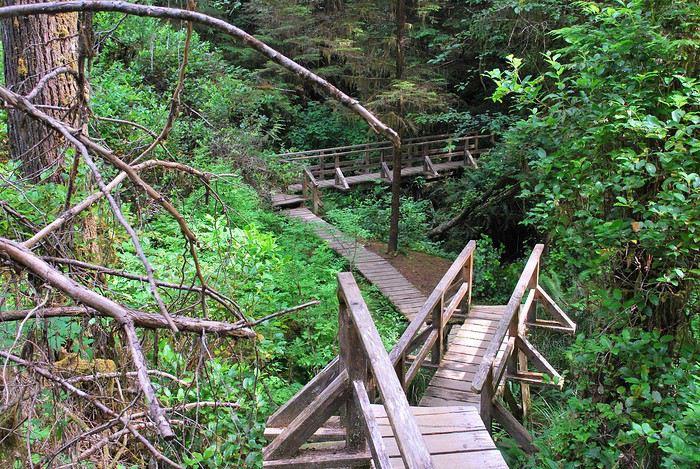 Pacific Rim National Park Reserve  / Schooner Trail 1439669132-gC3uk14KVxKlXNm