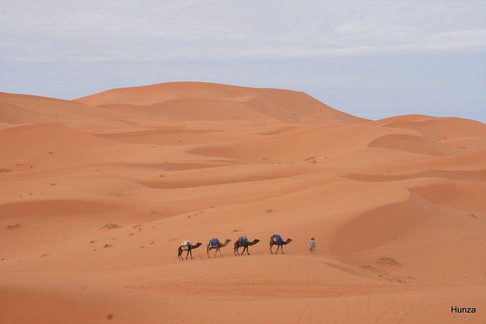 Trek dans les dunes de Merzouga et la palmeraie de Skoura au Maroc - hunza