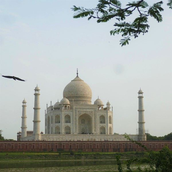Beautiful india : retour de 3 semaines au Rajasthan - alexval